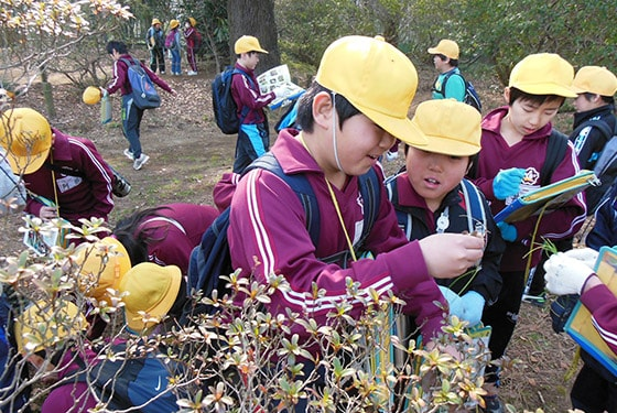 Ecological Learning (March 2013 at Shimizu Park)