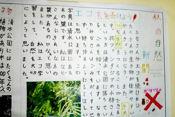 Wall newspaper of a summary of Ecological Learning by elementary school students (2011)
